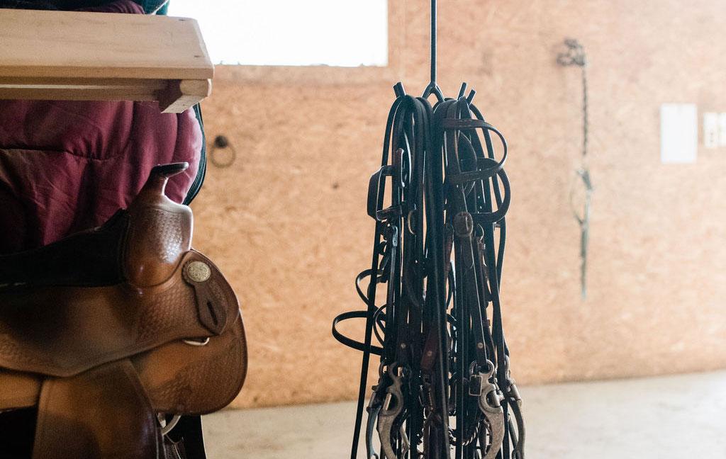 Bujnoch Ranch – přípravna
