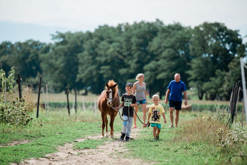 Bujnoch Ranch – výběh & děti
